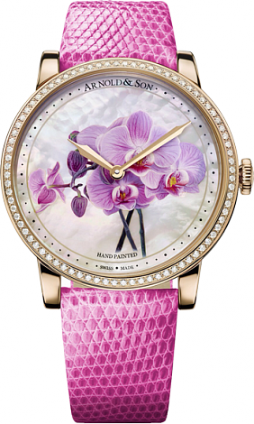 Arnold & Son Royal Collection HM Flower Orchid 1LCMP.M04A.L513A